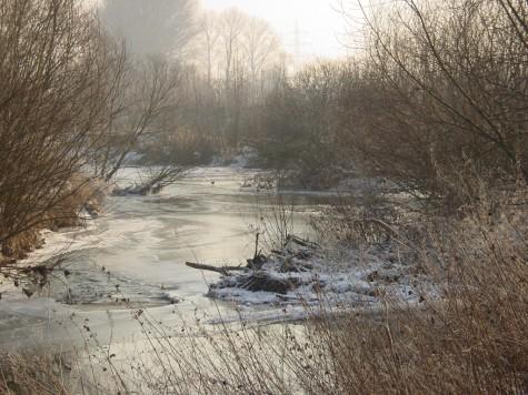 Renaturiert würde die Nidda langsamer fließen und im Winter zufrieren - Nidda in Dortelweil